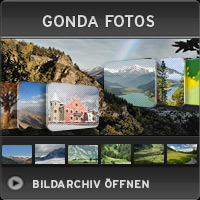 Das Gonda Bildarchiv